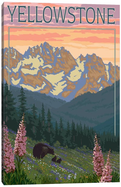 Yellowstone National Park (Black Bear Family) Canvas Art Print