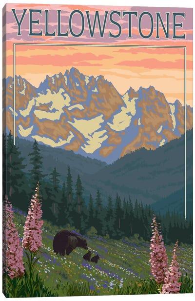 U.S. National Park Service Series: Yellowstone National Park (Black Bear Family) Canvas Print #LAN118