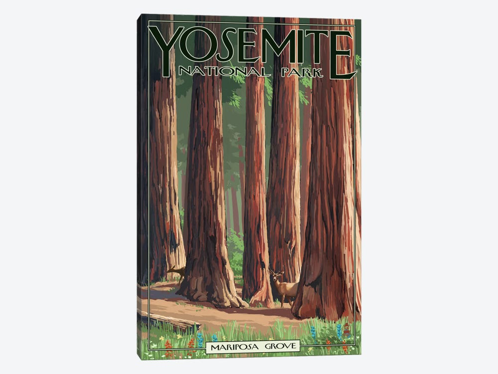 Yosemite National Park (Mariposa Grove) by Lantern Press 1-piece Art Print