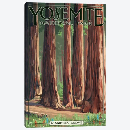Yosemite National Park (Mariposa Grove) Canvas Print #LAN127} by Lantern Press Art Print