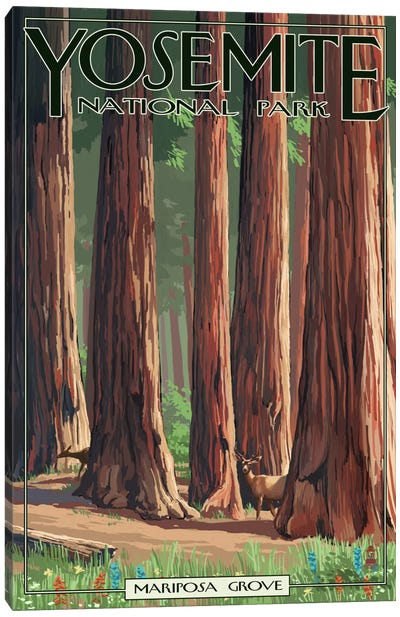 Yosemite National Park (Mariposa Grove) Canvas Art Print