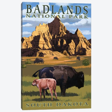 Badlands National Park (Bison And Calf) Canvas Print #LAN67} by Lantern Press Canvas Artwork