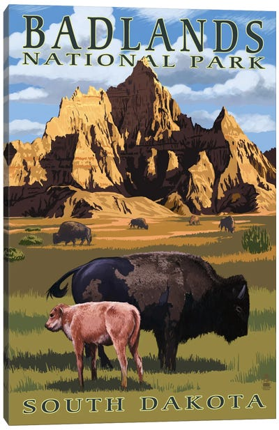 Badlands National Park (Bison And Calf) by Lantern Press Canvas Art Print