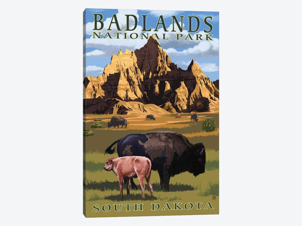 Badlands National Park (Bison And Calf) by Lantern Press 1-piece Canvas Wall Art