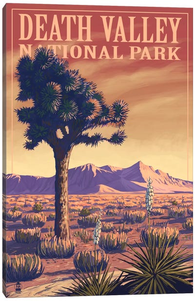 Death Valley National Park (Joshua Tree) by Lantern Press Canvas Art Print