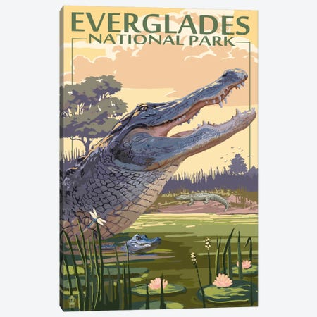 Everglades National Park (Alligators) Canvas Print #LAN80} by Lantern Press Canvas Art Print