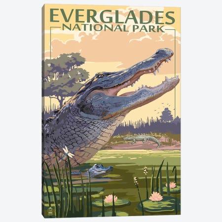 Everglades National Park (Alligators) Canvas Print #LAN80} by Lantern Press Canvas Art Print