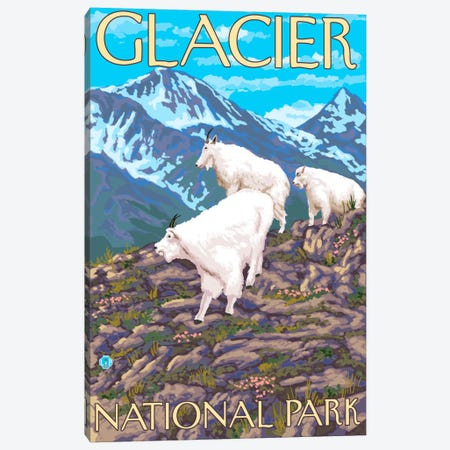 Glacier National Park (Mountain Goats) Canvas Print #LAN84} by Lantern Press Canvas Wall Art