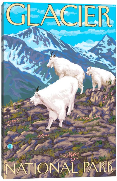 Glacier National Park (Mountain Goats) by Lantern Press Canvas Art Print