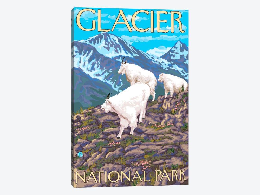 Glacier National Park (Mountain Goats) by Lantern Press 1-piece Canvas Art Print
