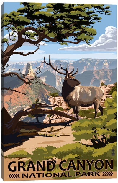 Grand Canyon National Park (Elk At The South Rim) by Lantern Press Canvas Art Print
