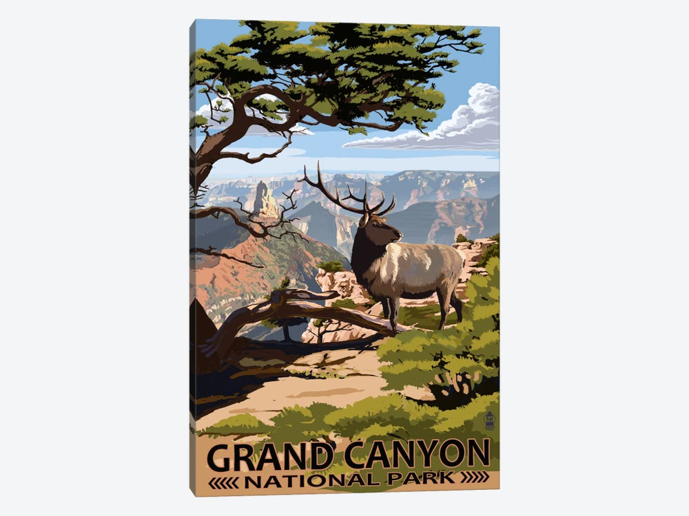 Grand Canyon National Park (Elk At The South Rim) by Lantern Press 1-piece Canvas Artwork