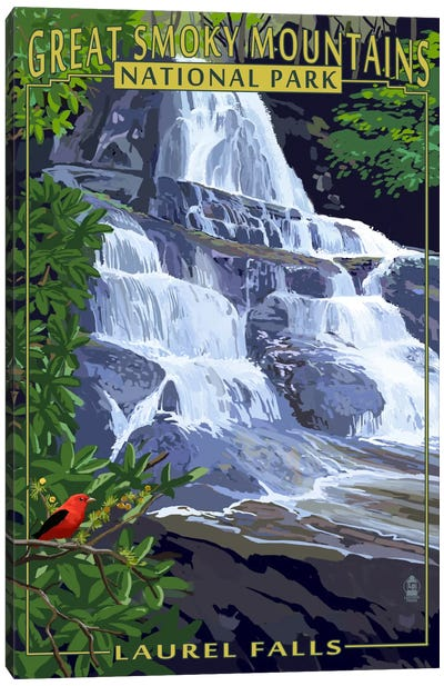 U.S. National Park Service Series: Great Smoky Mountains National Park (Laurel Falls) Canvas Print #LAN96