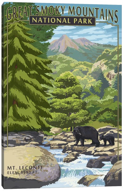 U.S. National Park Service Series: Great Smoky Mountains National Park (Mount Le Conte) Canvas Art Print