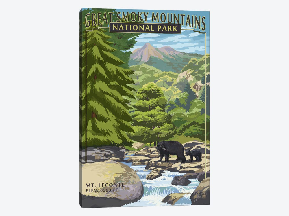 Great Smoky Mountains National Park (Mount Le Conte) by Lantern Press 1-piece Canvas Art Print