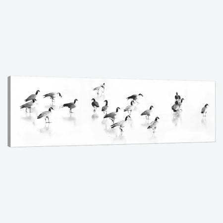 Flock Of Canada Geese Canvas Print #LAT18} by Lu Anne Tyrrell Canvas Art