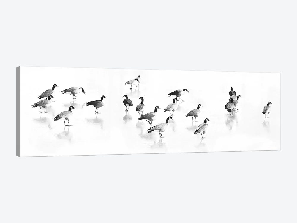 Flock Of Canada Geese by Lu Anne Tyrrell 1-piece Canvas Art Print