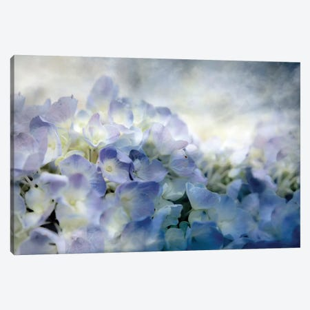 Calm Canvas Print #LAT4} by Lu Anne Tyrrell Canvas Wall Art