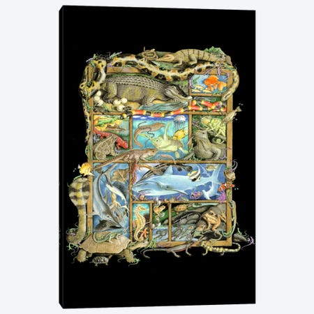 Reptiles, Fish & Amphibians Canvas Print #LAU213} by Laura Seeley Canvas Art
