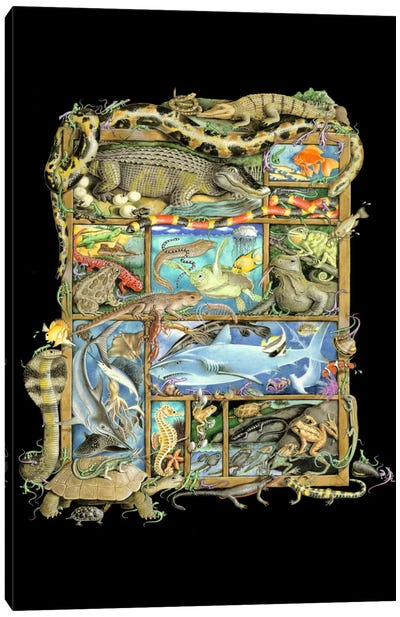Reptiles, Fish & Amphibians Canvas Art Print