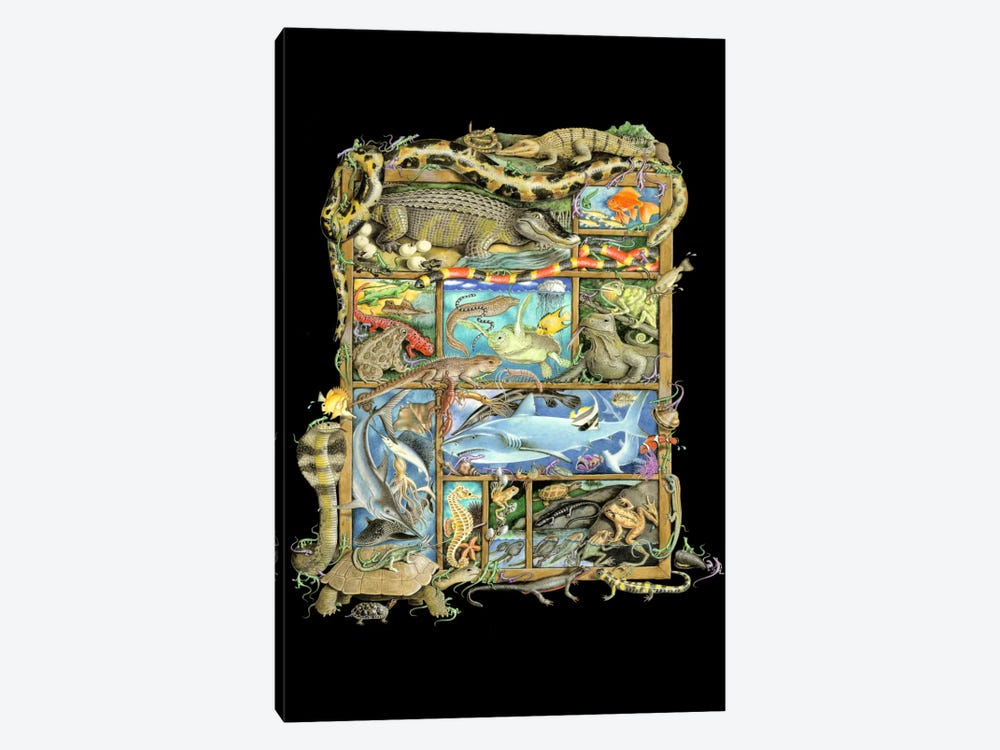 Reptiles, Fish & Amphibians by Laura Seeley 1-piece Canvas Print