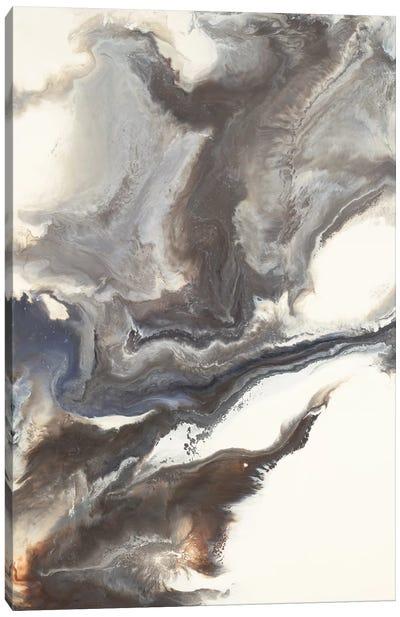 Hirondelle Canvas Art Print