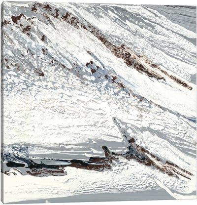 Gray Marble Canvas Art Print