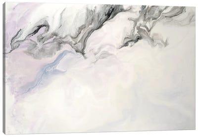 Hints of Pink Canvas Art Print