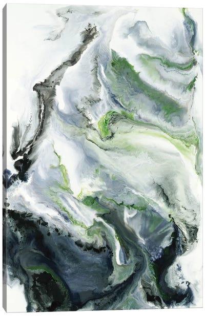 Last Night's Dream Canvas Art Print