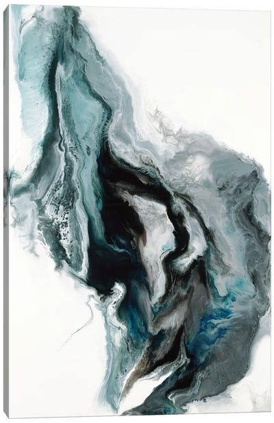 Metaphor Canvas Art Print