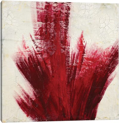 Red Splash Canvas Art Print