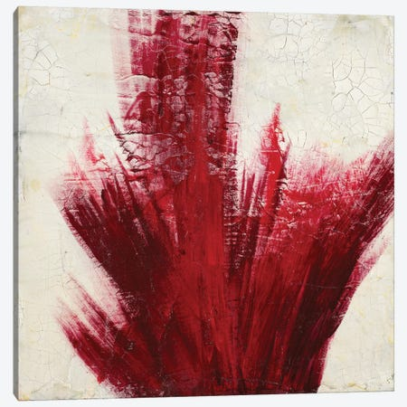 Red Splash Canvas Print #LAV37} by Corrie LaVelle Canvas Print