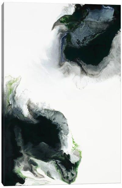 Triumph Canvas Art Print