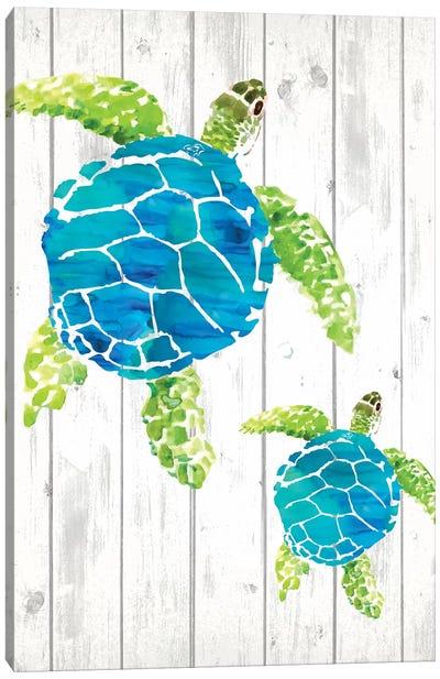 Seaglass Shore III  Canvas Art Print