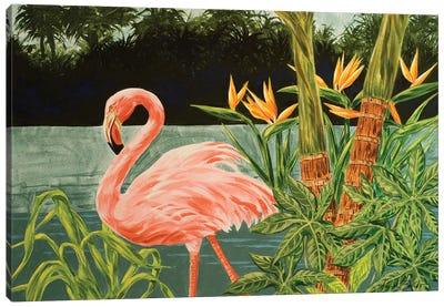 Tropical Flamingo I Canvas Art Print