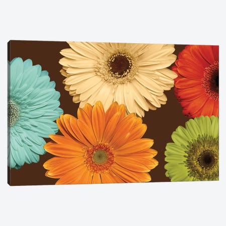 Daisy's Friends Canvas Print #LBL4} by Lindsay Blake Canvas Artwork