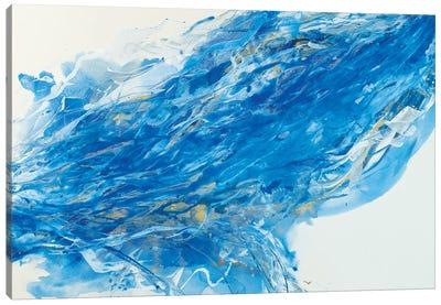 Waterworks I Canvas Art Print