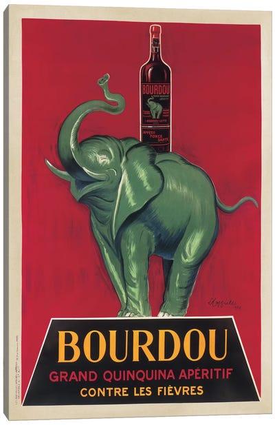 Bourdou Canvas Art Print