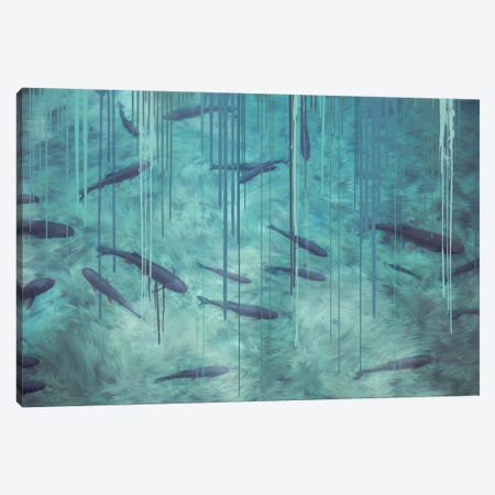 Shallow Shadows Canvas Print #LCL15} by 5by5collective Canvas Artwork