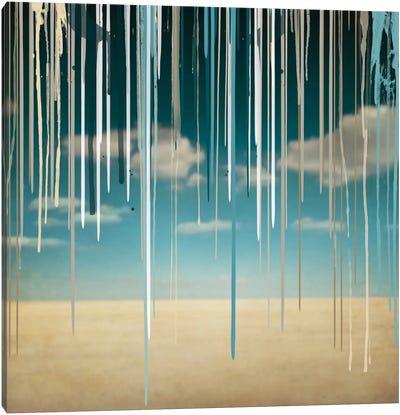 Somber Desert Canvas Art Print