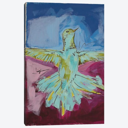 Hummingbird Pride I Canvas Print #LCM29} by Lauren Combs Canvas Art Print