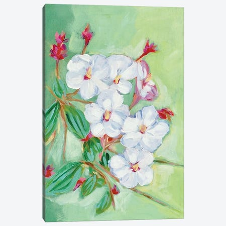 Stems Canvas Print #LCM48} by Lauren Combs Canvas Print
