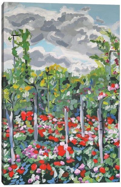 Climbing Garden Canvas Art Print