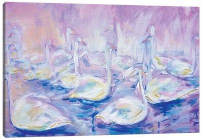 Swan Lake Canvas Art Print