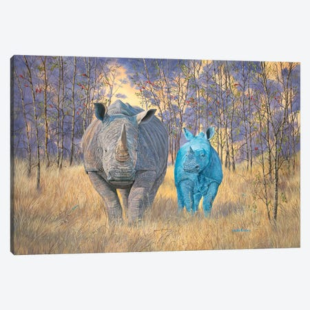 Earth And Sky Brothers Under The Sun Canvas Print #LCR14} by Laura Curtin Canvas Artwork