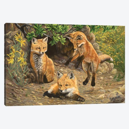 Let's Play Canvas Print #LCR24} by Laura Curtin Canvas Art Print