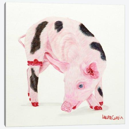 Poppy Canvas Print #LCR33} by Laura Curtin Canvas Print