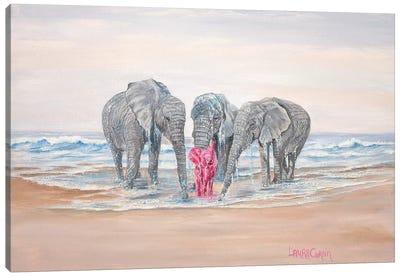 Back On Shore Canvas Art Print