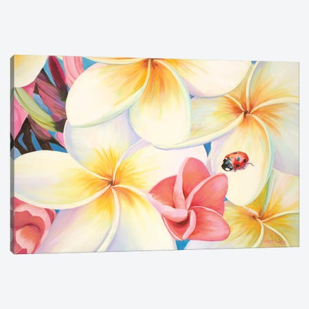 Lady Bug In The Plumeria Tree Canvas Print #LCR66} by Laura Curtin Canvas Art Print
