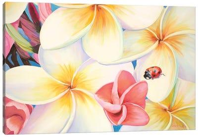 Lady Bug In The Plumeria Tree Canvas Art Print